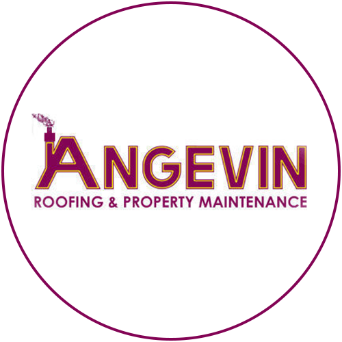 angevin logo circle